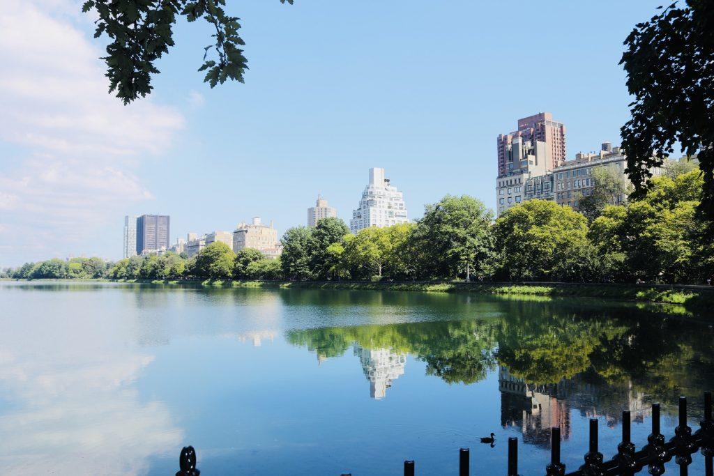 Central Park - Reservoir See